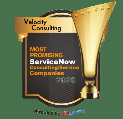 VSE CIO Review award